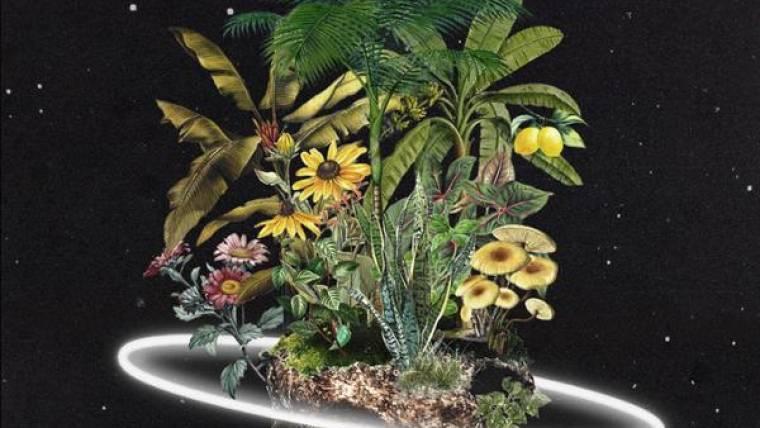Cosmic Gardens