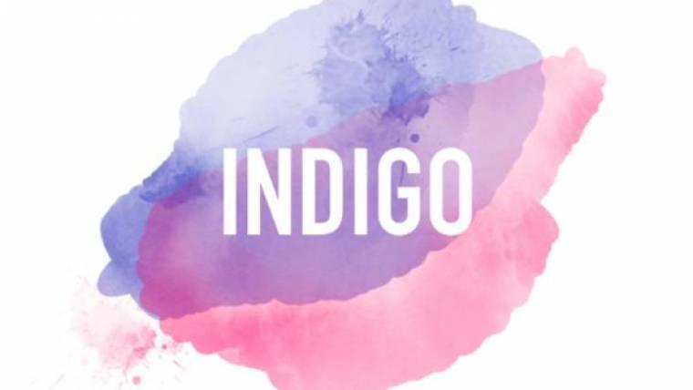 Indigo Collectif